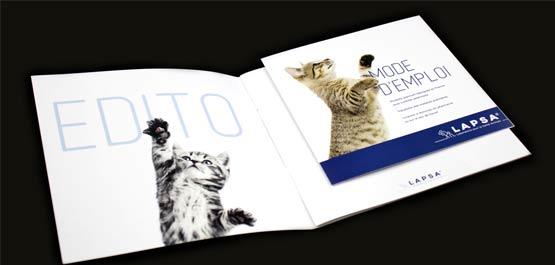 Brochure imprimée de chats